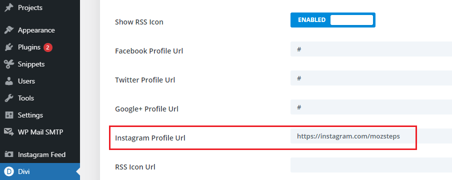 Add the default Instagram icons to Divi